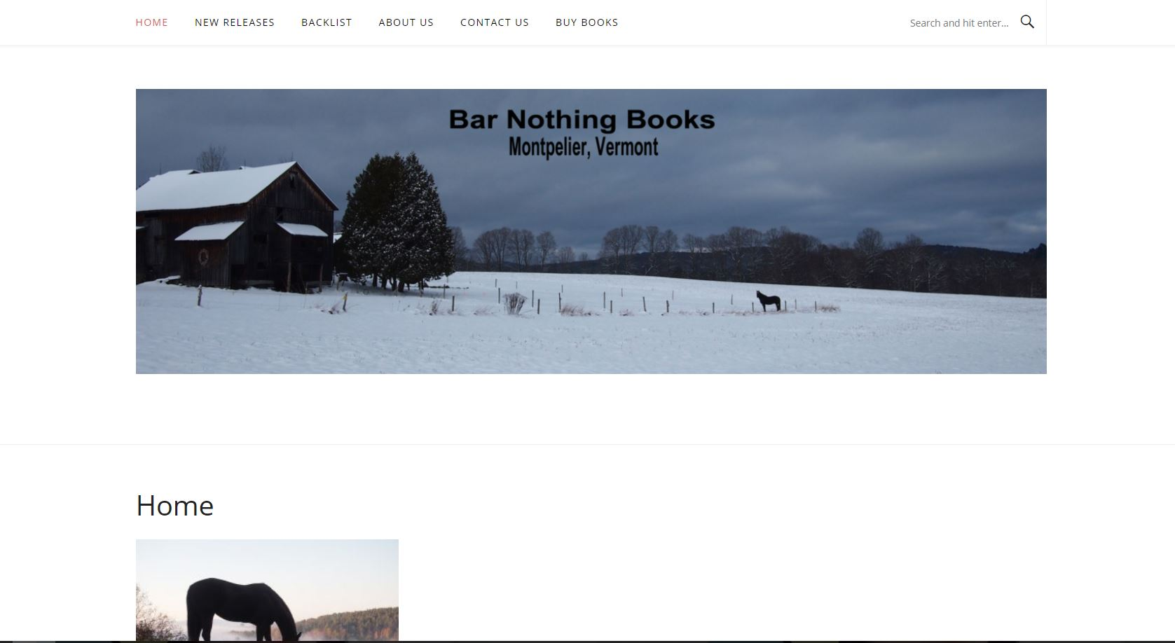 Barnothing Books Website Preview